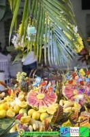 aloha-aar 005