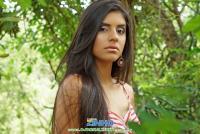 Emily Dias 026